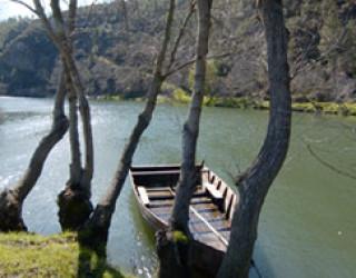 Vituga Video - aldeias jcima barca